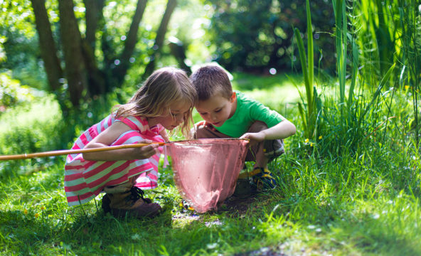 Two children examining the contents of a big insect net in a wooded garden.